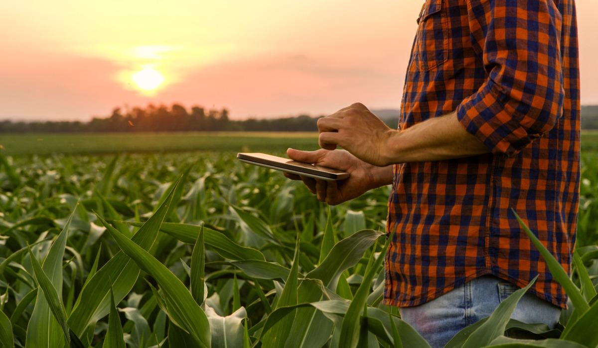 Los productos financieros claves para las empresas agrícolas